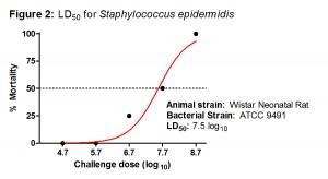 Figure 2 - S epidermidis